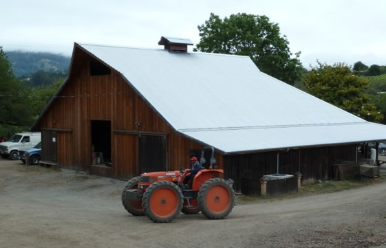 LEF's beautiful redwood barn, Juan on tractor in foreground