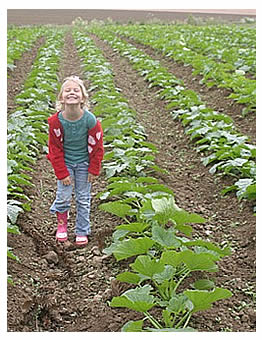 Elisa in a field of winter squash