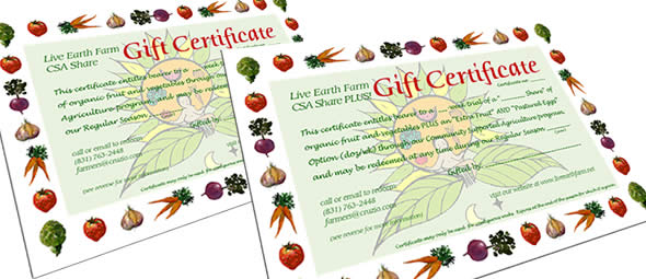 LEF CSA gift certificates