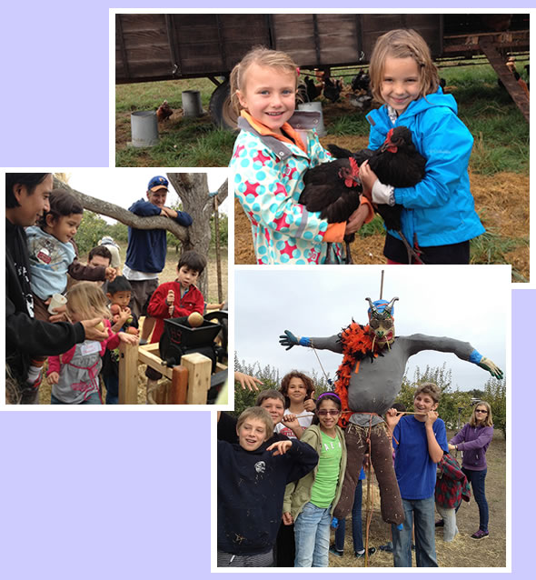LEFDP school group activities -- making cider, petting chickens, building scarecrows