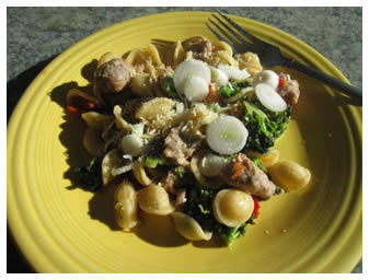 Orecchiette and Broccoli Salad