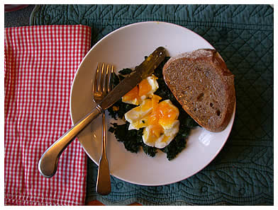 Soft-boiled egg on kale with toast