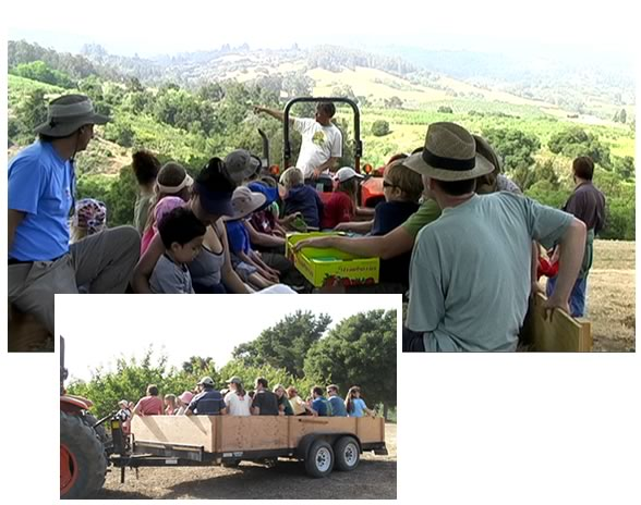 Farmer Tom's famous tractor hayride