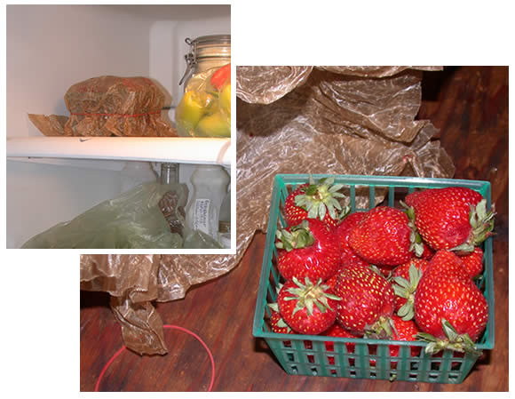storing fresh strawberries to last