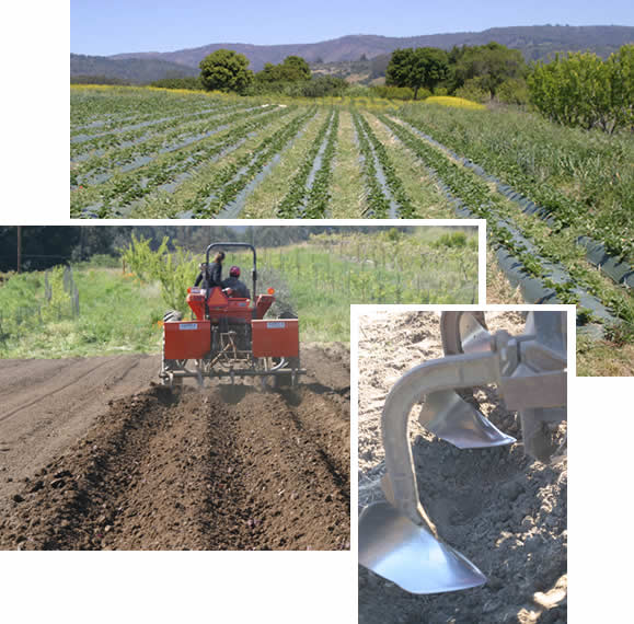 Examples of plowing straight rows