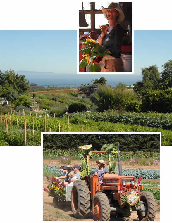 The UCSC Farm & Garden