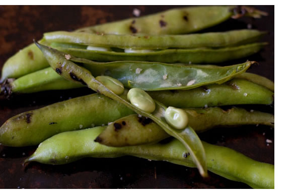 Heidi Swanson's photo of grilled fava beans